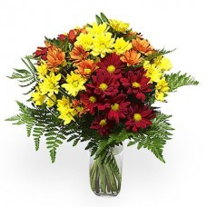 Buchet 9 crizanteme multicolore