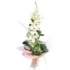 Buchet orhidee 3